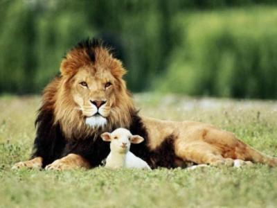 11 урок «Царство Божие»