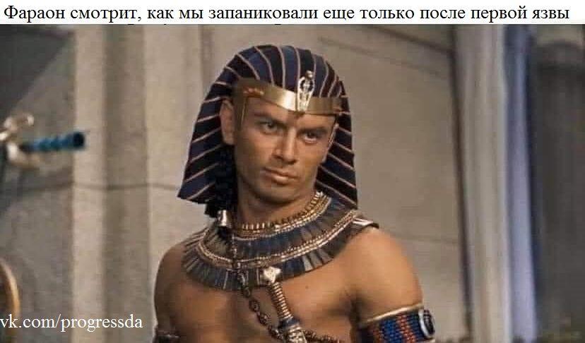 Фараон разочарован