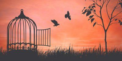 10 урок от ПА про покой: СВОБОДА В ИИСУСЕ (Субботний…)